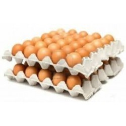 TRAY OF LARGE EGGS (30 EGGS)